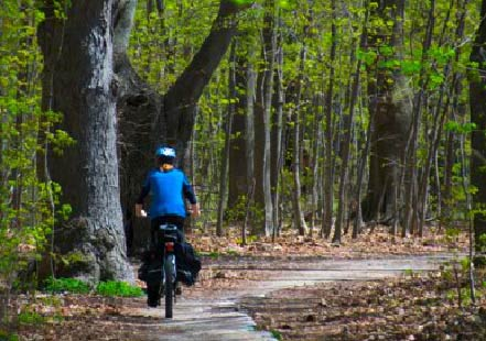 A leisurely ride on Fort Erie's seemingly endless network of cycling & recreation trails